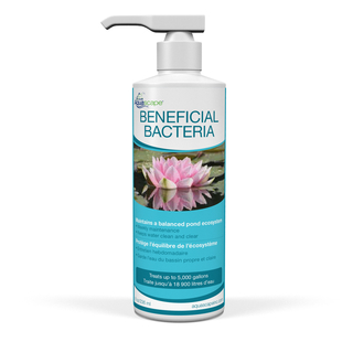Beneficial Bacteria for Ponds (Liquid) - 8 oz picture