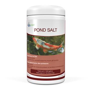 Pond Salt 2 lb picture