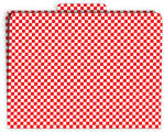 Red Check File Folder
