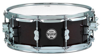 PDCM5514SSTW - PDP CONCEPT MAPLE - TRANSPARENT WALNUT - CHROME HW 5.5x14 picture