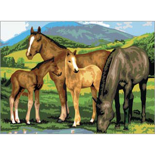 PJL13 - Jnr Large/Horses & Foal picture