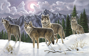 PAL19 - ADULT LARGE/WOLVES picture
