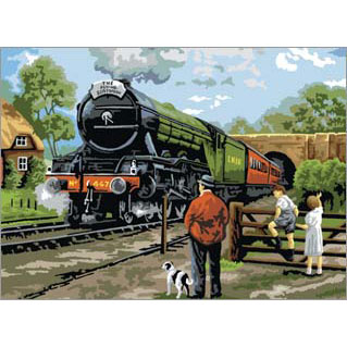 PAL15 - Adult Large/Steam Train picture