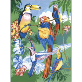 PJS15 - Jnr Small/Tropical Birds picture