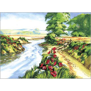 PAL13 - Adult Large/Poppy Field picture