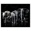 SILF40 - SILVER ENGRAVING ELEPHANT HERD