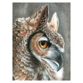CPN19 - COLOUR BY # PENCIL SEPIA OWL