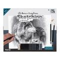 SKBNL11 - CAUTIOUS EYES LARGE SKETCHING