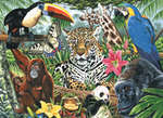 PCL3 - ZOO CANVAS PAINTING