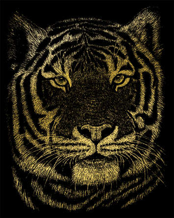 GOLF23 - GOLD ENGRAVING BENGAL TIGER picture