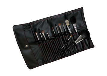 BC-SET12 - 12 PC. SILK BRUSH SET picture