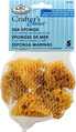 R2124 - 5PC SEA SPONGE SET
