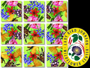 American Native Flowers Scramble Squares® picture