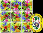 American Native Flowers Scramble Squares®