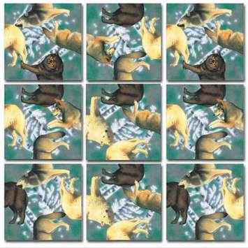 Wolves Scramble Squares® picture