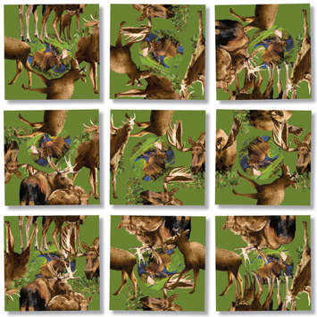 Moose, Scramble Squares® picture