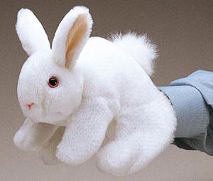 Rabbit, Bunny White picture
