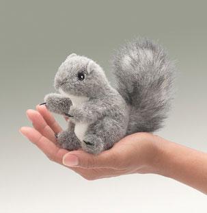 Mini Gray Squirrel picture