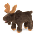 Moose, Small