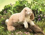 Rabbit, Floppy Bunny