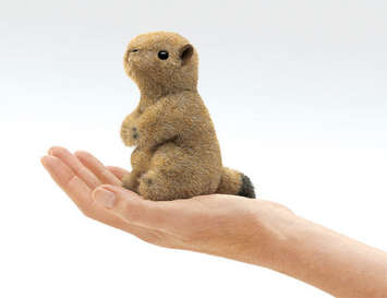 Mini Prairie Dog picture