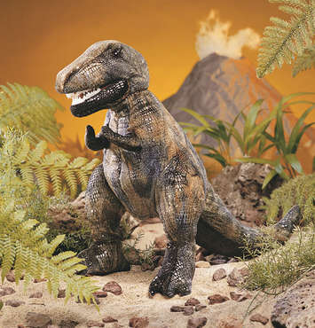 Tyrannosaurus Rex picture