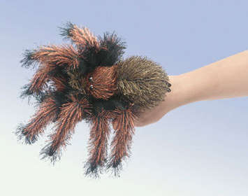 Tarantula, Small picture