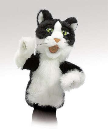 Tomcat picture
