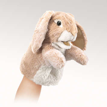 Little Lop Rabbit picture
