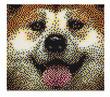 Dog Pixel Art Set additional picture 1