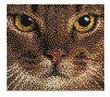 Cat Pixel Art Set additional picture 1