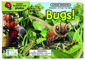 Junior Groovies: Bugs