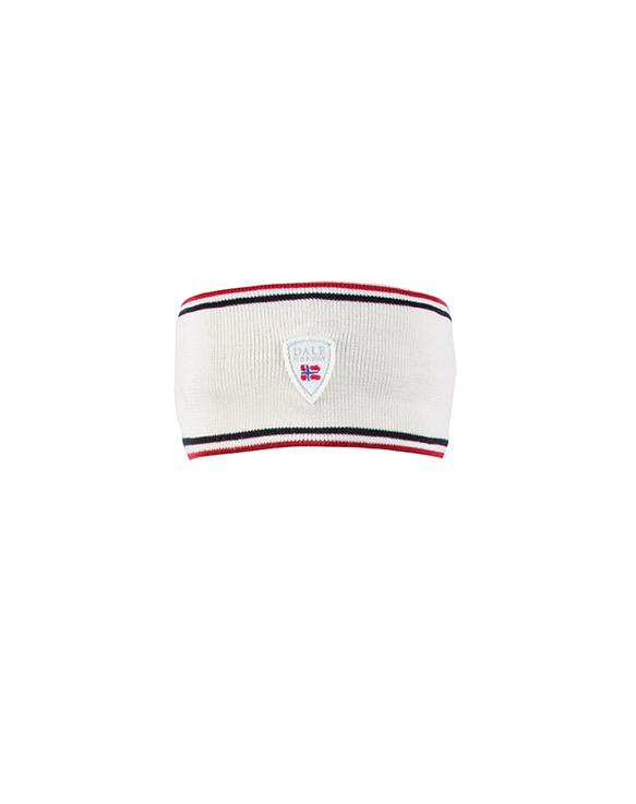 Flagg Headband (1)