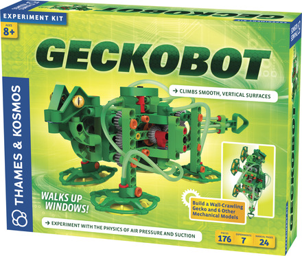 Geckobot picture
