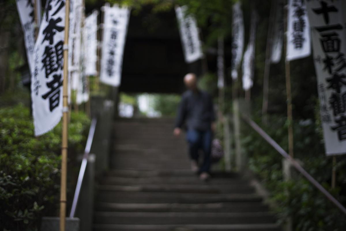 鈴木光雄氏 ジッツオ トラベラーキット GK1545-82TQD レビューで撮影