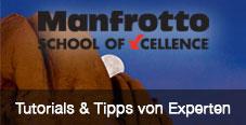 School of Xcellence