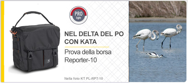 Nel delta del Po con Kata