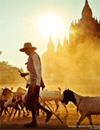 National Geographic Traveller contest
