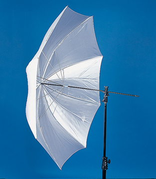 40'' Umbrella - Translucent