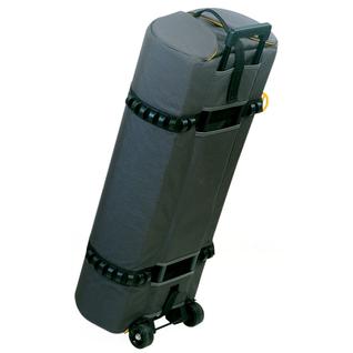 PALMS-1;Arch Lighting Bag