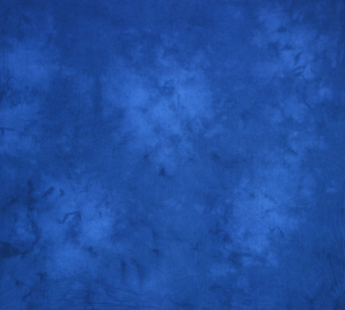 10'X24' Washable Muslin Background - Mississippi