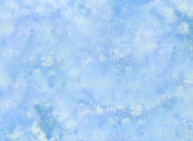 10'X24' Washable Muslin Background - Maine