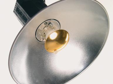 Softlite 17'' Silver Reflector
