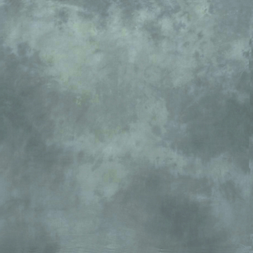 10'X24' Washable Muslin Background - Washington