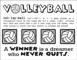 Say It With Stickers Mini - Volleyball picture