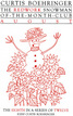 "Redwork Pattern - ""Curtis Boehringer"" - Snowman of the Month - All 12 Patterns additional picture 10"