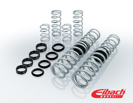 PRO-UTV | Stage 2 Performance Spring System (Set of 8 Springs) picture