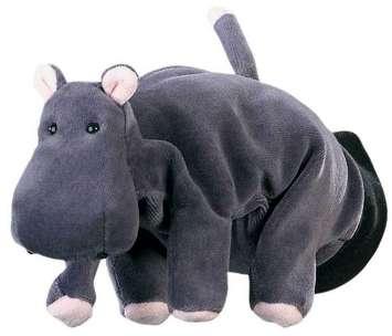 Hippo picture