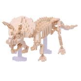 Triceratops Skeleton Model
