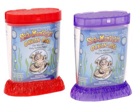Sea-Monkeys Ocean Zoo Neon picture